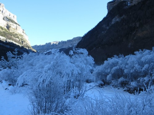 Hoarfrost in the Ordesa Valley