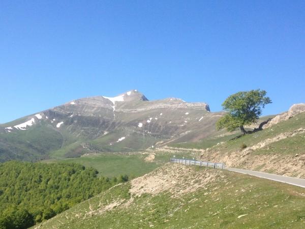 The peak of Orli