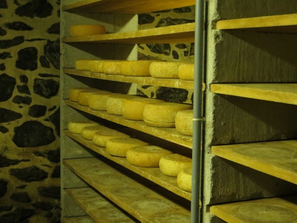 Cheeses and tradition