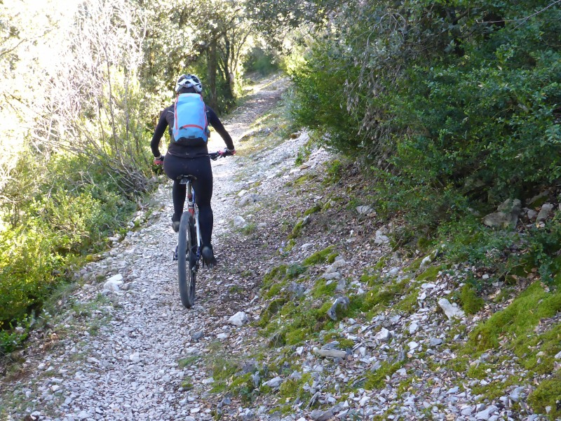 Biker on nice woody path on easiest option of the itinerary.