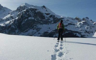 Snowshoeing in Candanchu