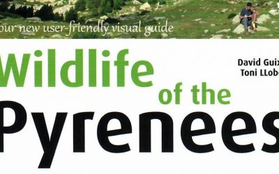 New Pyrenees wildflower and fauna guidebook in English