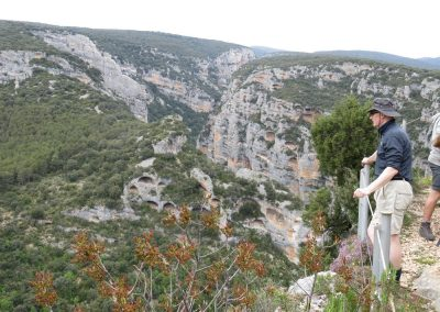 Vero Canyon