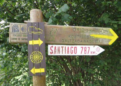 Camino de Santiago signal