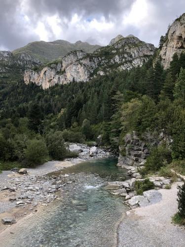 The Rio Ara