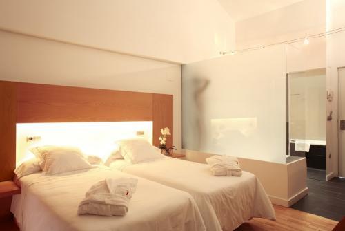 Hotel Tierra de Biescas - twin room