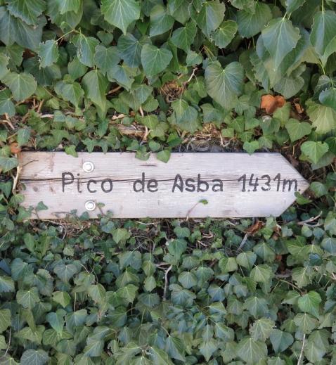 Signal to Pico de Asba. Day 4